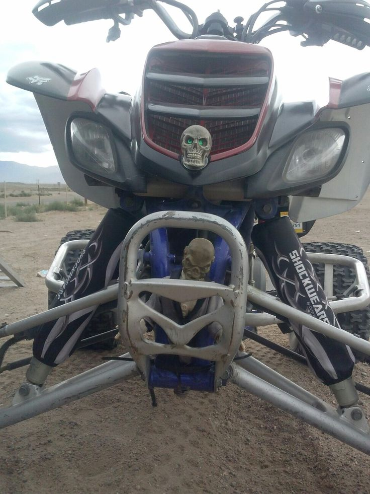 Mejores 14 imágenes de Raptor en Pinterest   Motocicletas todo ...