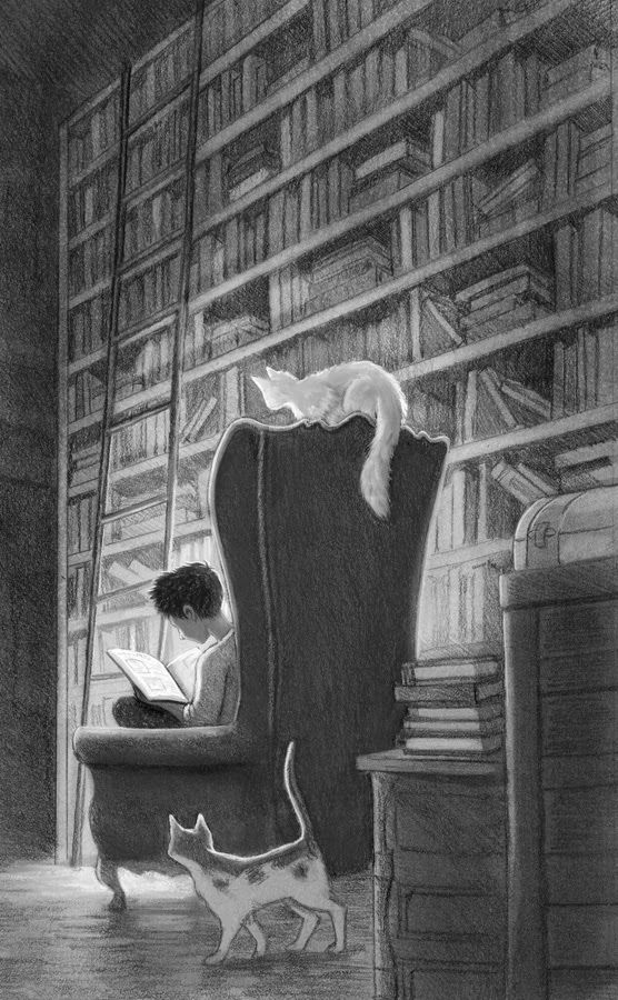 Erin McGuire. books and cats and massive armchairs