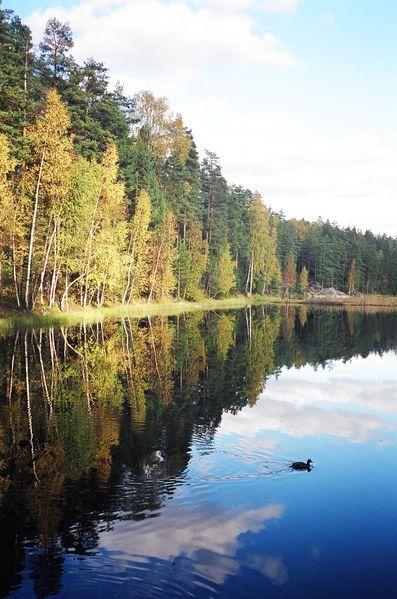 Nuuksio National Park in Finland