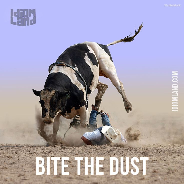 "Bite the dust means ""to die""."