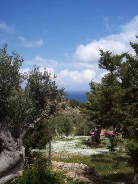 hiking in soller, mallorca