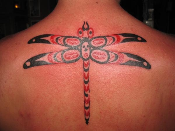 Haida dragonfly