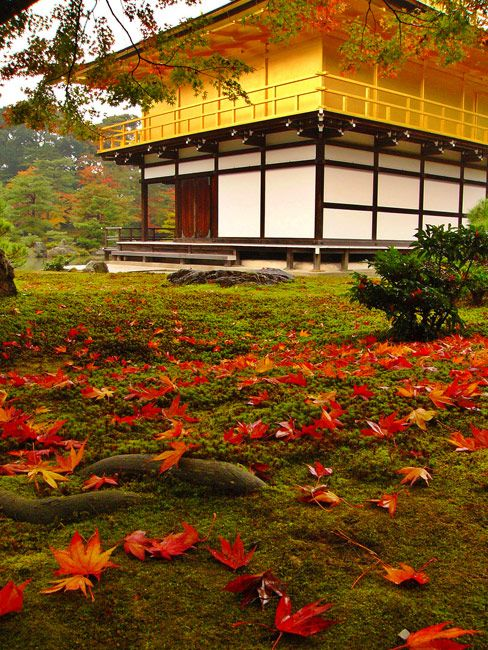 Kinkakuji in Kyoto, Japan... a lovely place i want to visit again; this is where the Zen rock garden is located