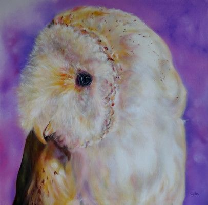 Carol Gillan Animal Artist & Pet Portraits - ANIMALS FOR SALE - ORIGINAL PORTRAITS IN OIL