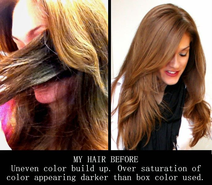 Beauty101bylisa Diy At Home Hair Lightening Amp Color