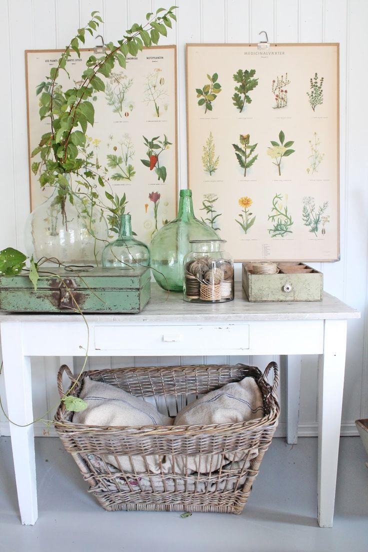 Tenkte jeg ville lage meg et liten grønn botanisk plass ,slik at planteplansjene kommer til sin rett her i huset....Disse hentet vi fra m...