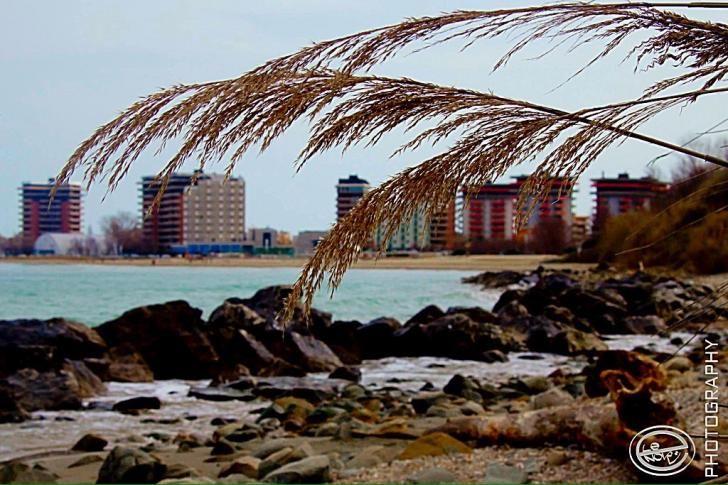 Obiettivo Pesaro: mare....ancora poche settimane e arriviamo http://vivere.biz/ahn3