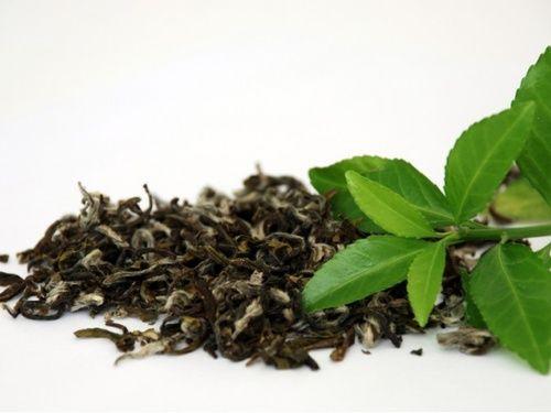 Tè verde, un concentrato di sostanze preziose...