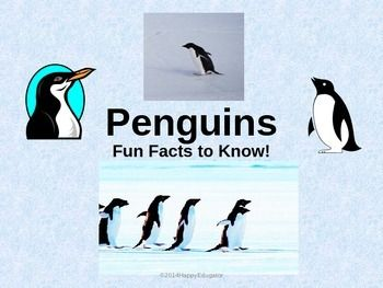 Penguins - Fun Facts About the Life of a Penguin PowerPoint. All about penguins...are you using a penguin theme in your classroom? Need to r...