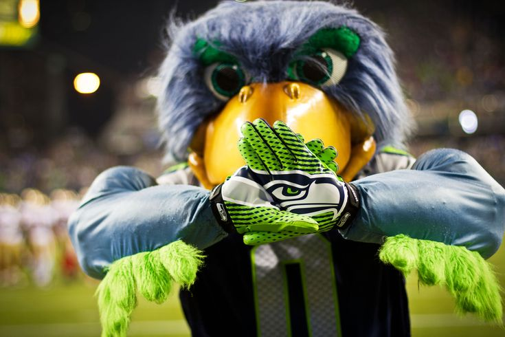 The mascot behind one of the NFL's most popular teams isn't actually a real bird. So what is it?