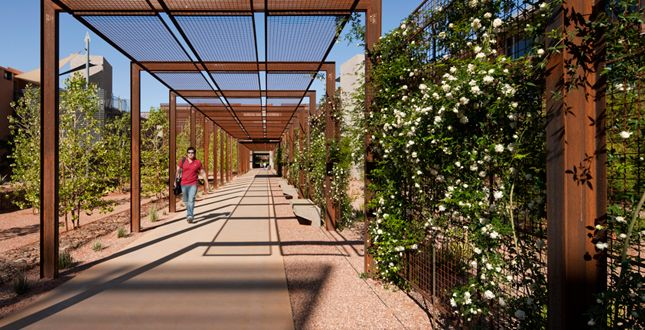 17 Best images about Hardscape structures bridgepergola