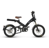 Ultra Motor A2B Electric Bike....incredible