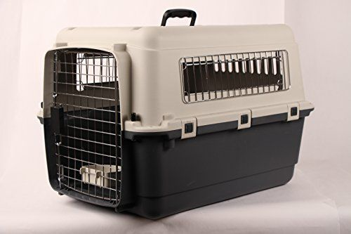 I just bought this and love it. JunkieDog 27″ Airline Approved Plastic Dog / Cat Pet Kennel Carrier or Air Travel with Chrome Door and Free Cup Foldable Dog Travel Crate . you can see what others said about it here http://bridgerguide.com/junkiedog-27-airline-approved-plastic-dog-cat-pet-kennel-carrier-or-air-travel-with-chrome-door-and-free-cup-foldable-dog-travel-crate/