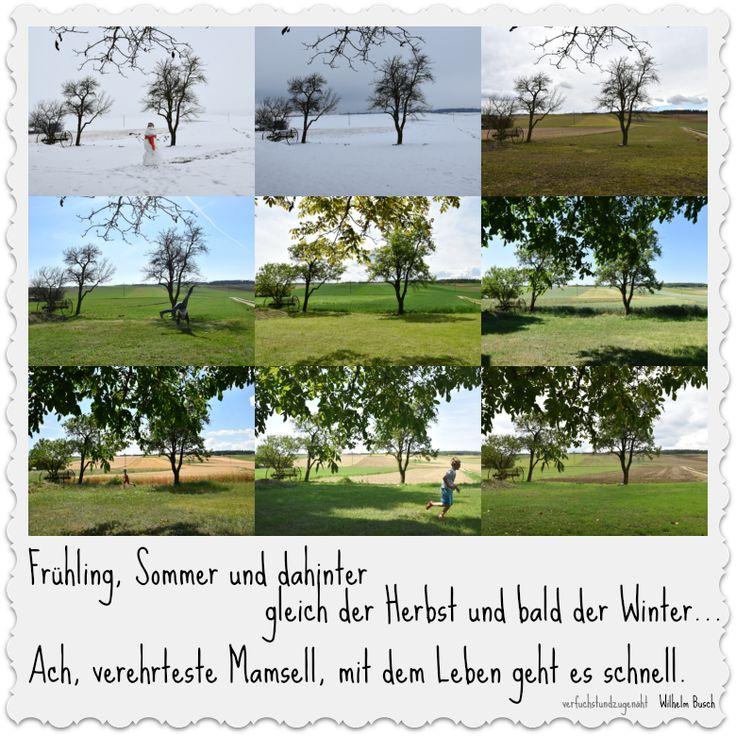 12tel Blick mit Wilhelm Busch und der Mamsell