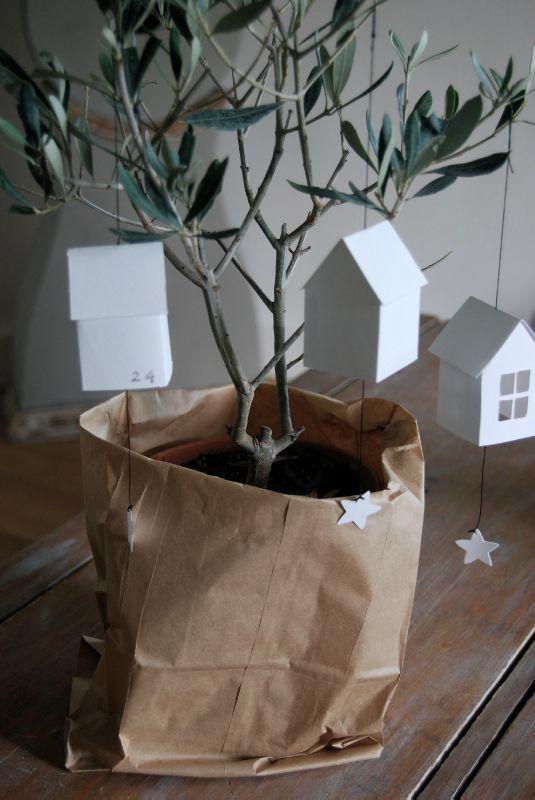 olive, xmas tree