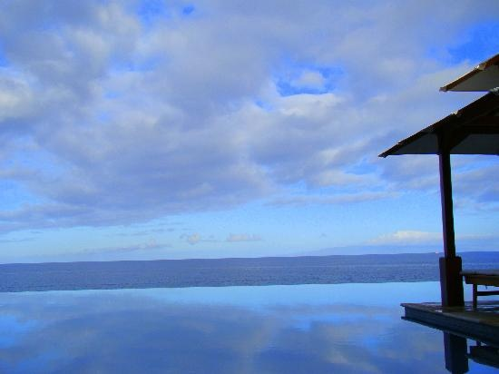Maui, Hawaii: Accommodation - Wailea Beach Marriott Resort & Spa. Best Infinitey Pool!