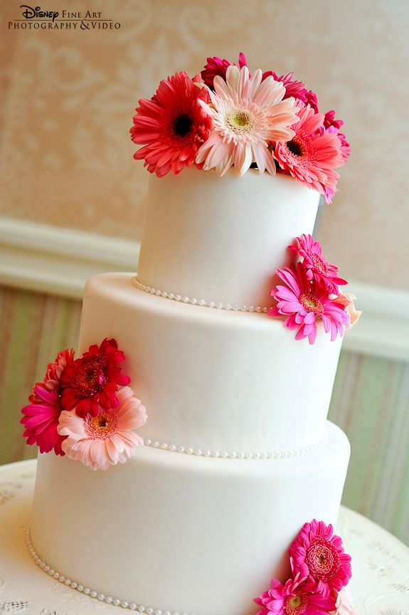 Simple white wedding cake topped with fresh pink gerber daisies- mix pink and yellow daisies and put a navy ribbon around each layer.