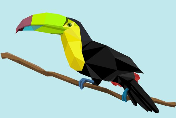 Polygon toucan.