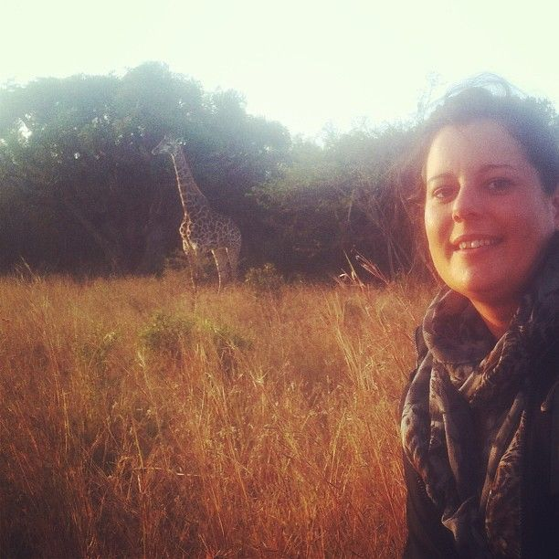 Getting up close and personal with an indlulamithi - Zulu for giraffe meaning taller than the trees