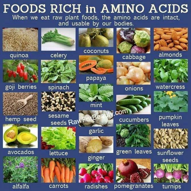 List Of Foods High In Essential Amino Acids