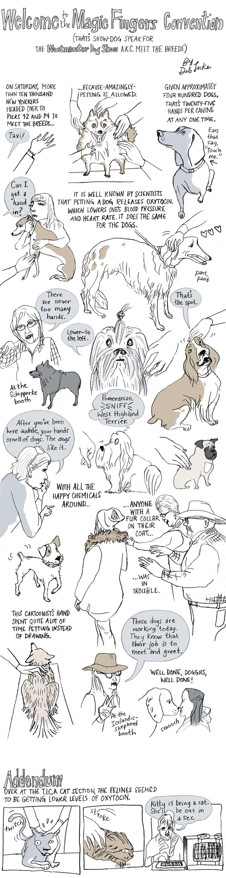 Welcome to the Magic Fingers Convention (Show-Dog Speak for the Westminster Dog Show) | The New Yorker