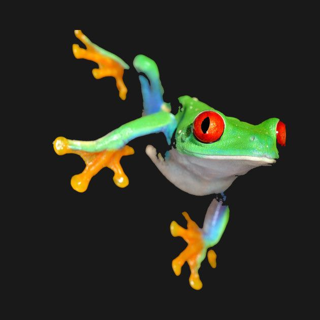 Check out this awesome 'Frog' design on @TeePublic!