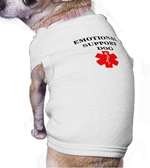 17 besten Dog Swim Wear Bilder auf Pinterest   Designer hund ...