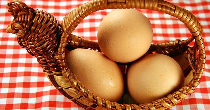 As melhores raças de galinhas poedeiras. Ao escolher uma raça de galinha poedeira, você deve levar diversos fatores em consideração. Quão produtiva elas serão? Quando começarão a botar ovos? Elas serão tão boas mães a ponto de ficarem sentadas em cima de seus ovos até que eles choquem? Elas serão agressivas com outras galinhas ou ficarão longe do galinheiro? Com o tempo, as galinhas ...
