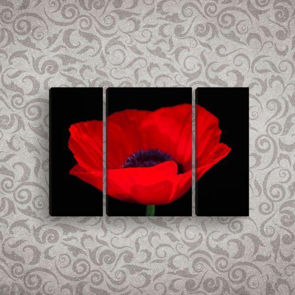 Модульная картина красный мак на черном фоне 100 х 60 см | Магазин модульных картин