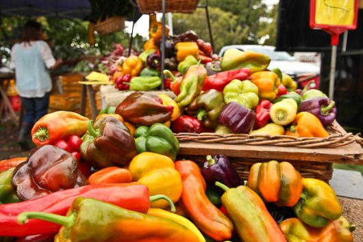Delicious produce in the Hawkes Bay, New Zealand (Hastings Farmers Market)
