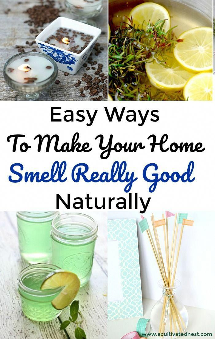 Ways To Make Your Home Smelly Really Good These Clever Diy Home