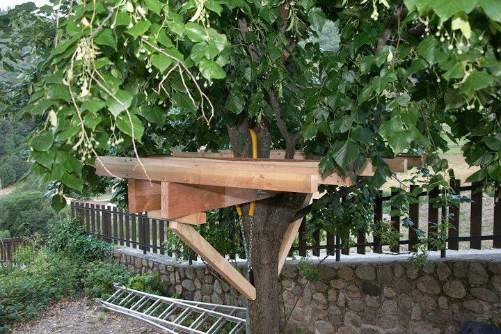 fabriquer une plateforme dans les arbres recherche. Black Bedroom Furniture Sets. Home Design Ideas