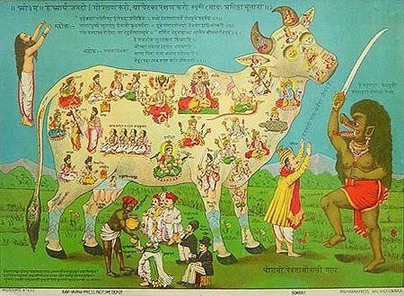 Sacred cow2 - Vache sacrée — Wikipédia
