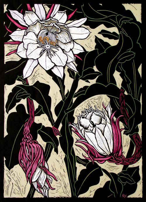 Night Flowering Cactus48.5 x 35 cm    Edition of 50Hand coloured linocut  on handmade Japanese paper.  Rachel Newling.