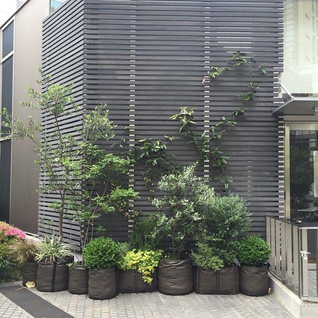 Petite jungle de pots en g otextile 50l et de petit - Decoration jardin exterieur design ...