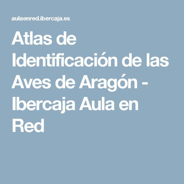 Atlas de Identificación de las Aves de Aragón - Ibercaja Aula en Red
