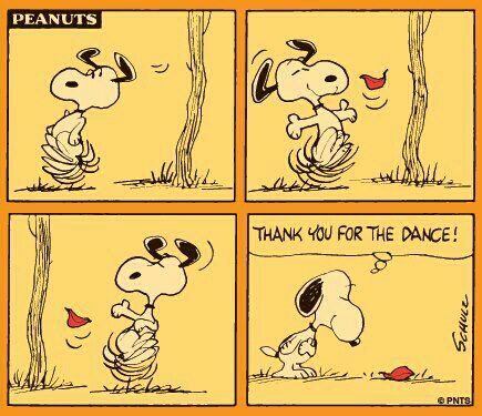 Fall dance                                                                                                                                                                                 Mais