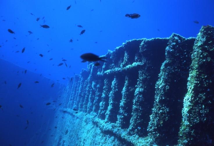 diving mare nostrum - Elba Island - Pomonte: the wreck