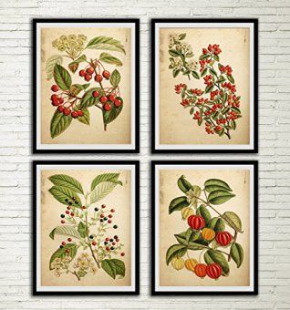 These sets of floral wall decor can be found in sets of two all the way up beyond sets of 12.  Moreover you will see a wide array of botanical wall prints to chose from, ranging from vintage to contemporary.  Meaning there are an abundance to pick from not to mention a plethora of sizes, styles and flower choices.    Vintage Red Flower Print Set Red Flower Botanical Art Antique Fern Book Wall Decor Fern Leaf Home Art Wall Hanging