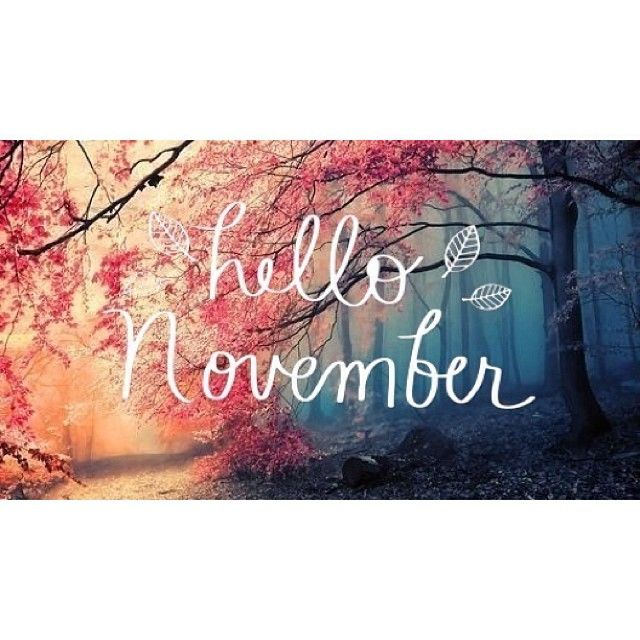 *Hello November* (My birthday month!):