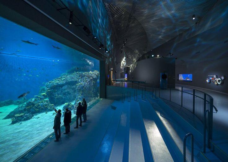 https://www.dezeen.com/2013/03/26/the-blue-planet-aquarium-by-3xn/
