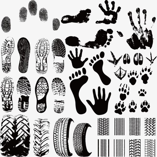 Creative Lines Fingerprint Lines Footprint Png And Vector With Transparent Background For Free Download Silhouette Vector Forensics Footprint