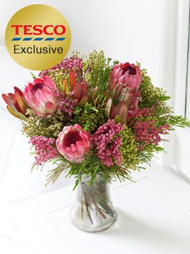 3 Safari Sunset red leucodendron and 3 protea, hand-tied with a mixed bunch of Cape foliage - Tesco £27