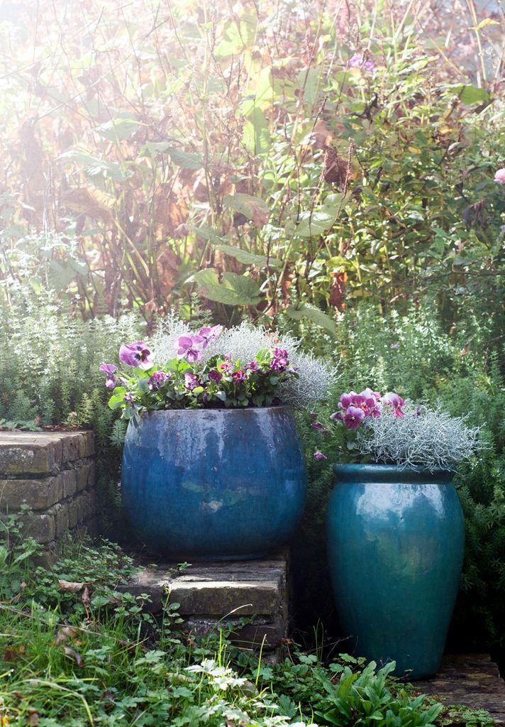 Herfsttrends in de tuin