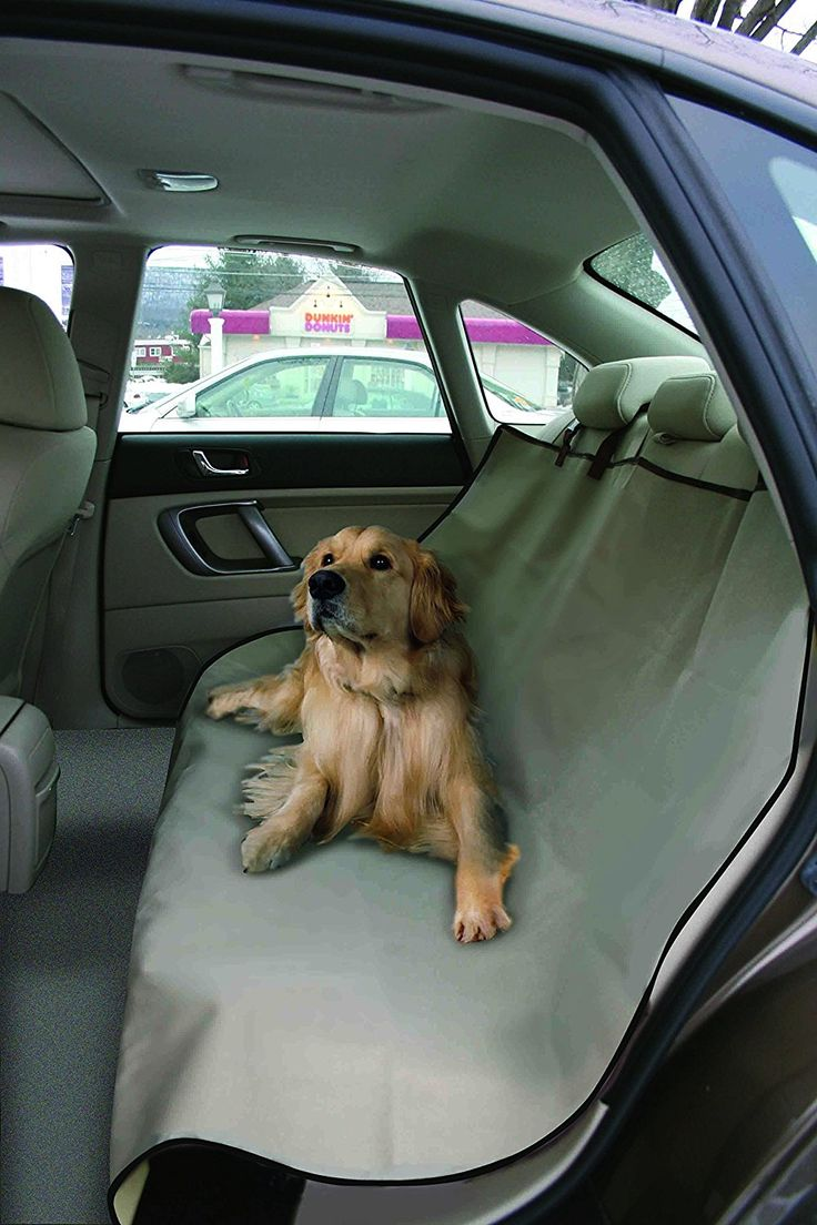 Waterproof, Cheap Car Back Seat Cover. Fits All Vehicles. Auto Accessory For Your Pet. Best Dog Or Cat Pet Product For Travel. *** You can find more details here : Dog Carriers and Travel Products