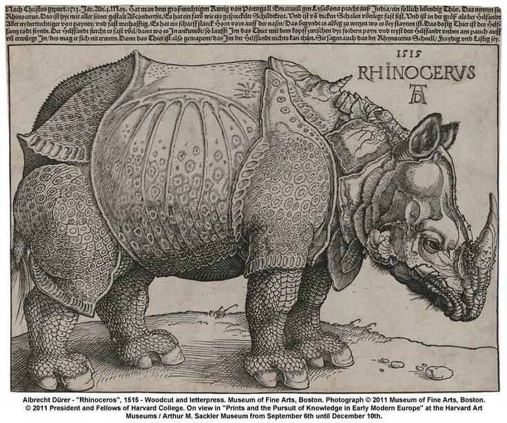 Albrecht Durer, Rhinoceros, 1515. 11/10/14 8/15/16