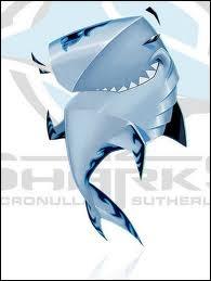 Reefy the shark