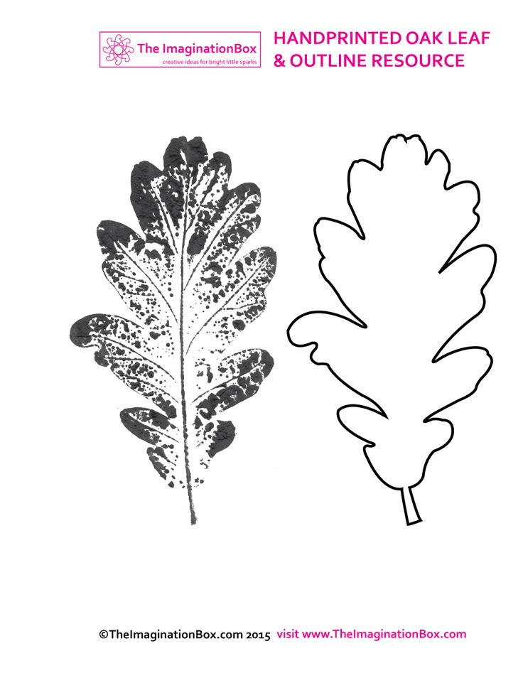 printed-oak-leaf-2.jpg (1000×1297)