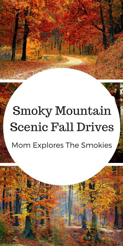 Whether on vacation, holiday or living local, these scenic fall drives through the Smokies are sure to be a hit on your next family trip to the Smoky Mountains!