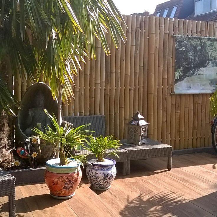 Bamboo Fence Panel Giant 180 x 180 cm i 2020